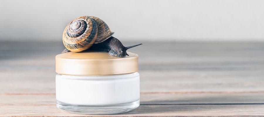 Crème à base de bave d'escargot